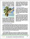 0000096670 Word Template - Page 4