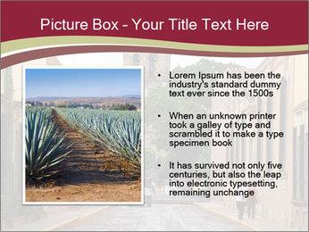 0000096674 PowerPoint Template - Slide 13