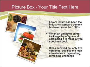 0000096678 PowerPoint Template - Slide 17