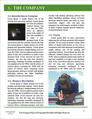 0000096679 Word Template - Page 3