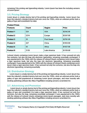 0000096684 Word Template - Page 9