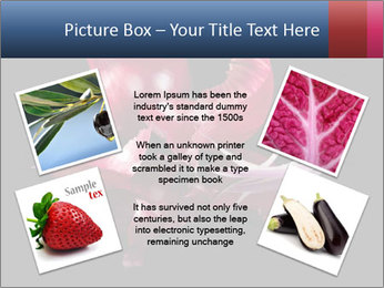 Luxurious purple PowerPoint Template - Slide 24