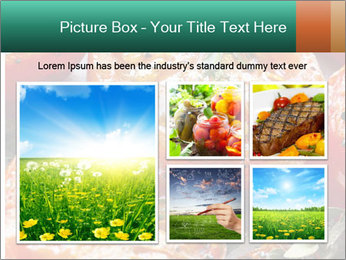 Roasted cherry tomatoes PowerPoint Template - Slide 19