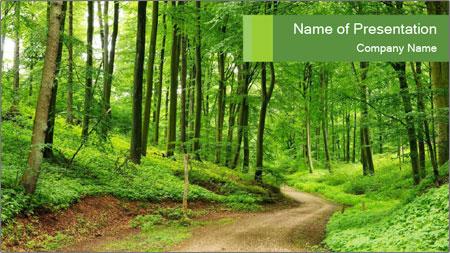 Green summer forest PowerPoint Template