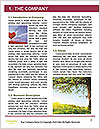 0000096696 Word Template - Page 3