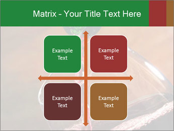 Red wine PowerPoint Template - Slide 37