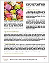 0000096705 Word Template - Page 4