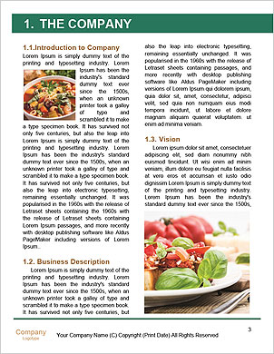 0000096707 Word Template - Page 3