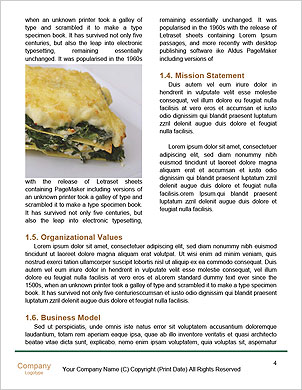 0000096707 Word Template - Page 4