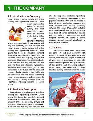0000096709 Word Template - Page 3