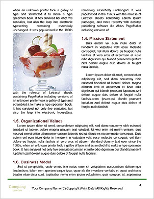 0000096709 Word Template - Page 4