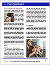 0000096714 Word Template - Page 3