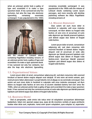 0000096716 Word Template - Page 4