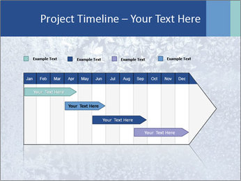Ice PowerPoint Template - Slide 25