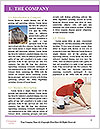 0000096719 Word Template - Page 3