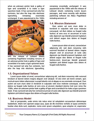 0000096721 Word Template - Page 4