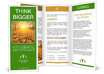 0000096723 Brochure Template