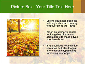 Colorful foliage PowerPoint Template - Slide 13