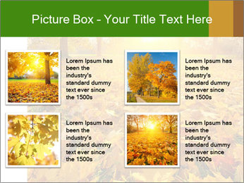 Colorful foliage PowerPoint Template - Slide 14