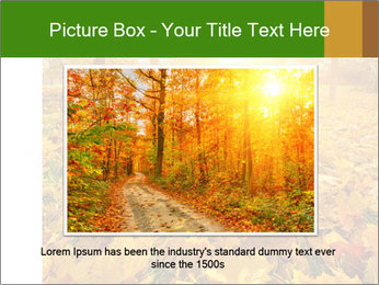 Colorful foliage PowerPoint Template - Slide 16