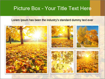 Colorful foliage PowerPoint Template - Slide 19