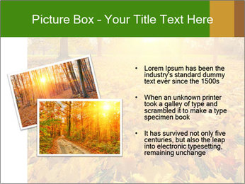 Colorful foliage PowerPoint Template - Slide 20