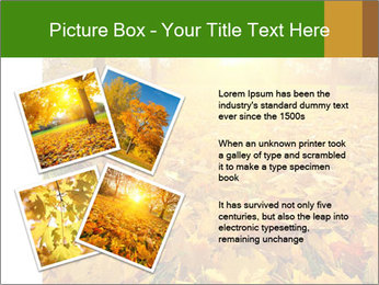 Colorful foliage PowerPoint Template - Slide 23