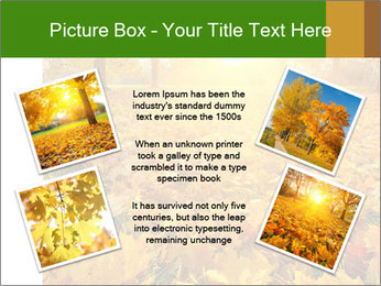 Colorful foliage PowerPoint Template - Slide 24