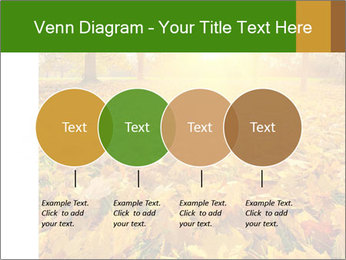 Colorful foliage PowerPoint Template - Slide 32