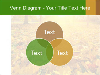 Colorful foliage PowerPoint Template - Slide 33
