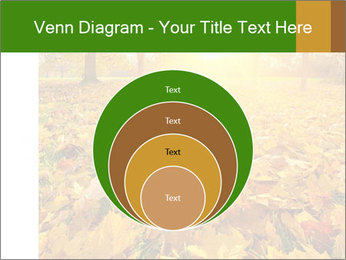 Colorful foliage PowerPoint Template - Slide 34