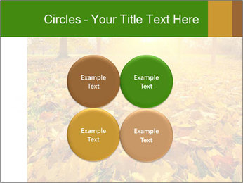 Colorful foliage PowerPoint Template - Slide 38