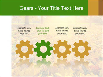 Colorful foliage PowerPoint Template - Slide 48