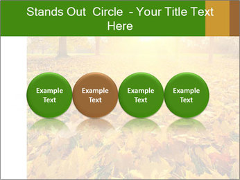 Colorful foliage PowerPoint Template - Slide 76