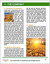 0000096723 Word Template - Page 3