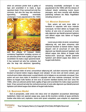 0000096723 Word Template - Page 4