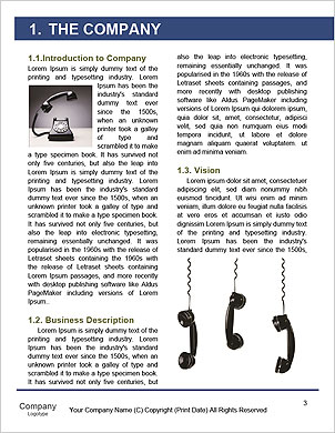 0000096725 Word Template - Page 3