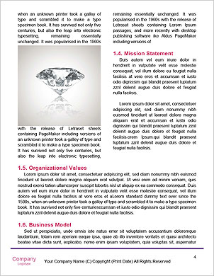 0000096728 Word Template - Page 4