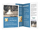 0000096732 Brochure Templates