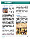 0000096733 Word Template - Page 3