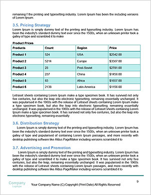 0000096733 Word Template - Page 9