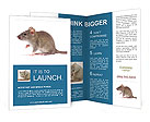 0000096734 Brochure Templates