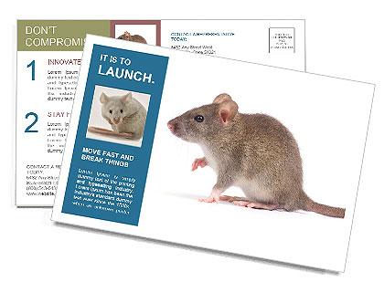 0000096734 Postcard Template