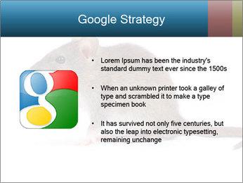 Rat PowerPoint Template - Slide 10