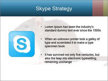 Rat PowerPoint Template - Slide 8