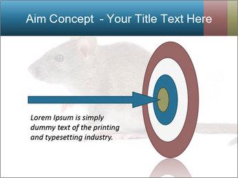Rat PowerPoint Template - Slide 83