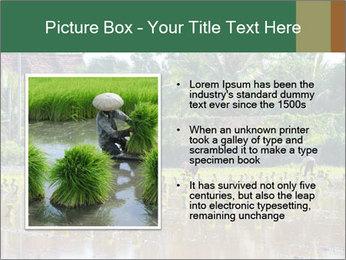 0000096741 PowerPoint Template - Slide 13