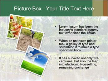 0000096741 PowerPoint Template - Slide 17