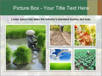 0000096741 PowerPoint Template - Slide 19