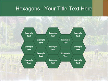 0000096741 PowerPoint Template - Slide 44